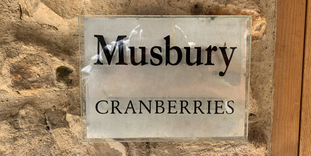 Musberry_at_cranberries_0